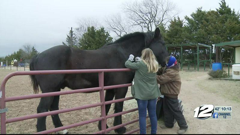 Local horseback riding center receives grant from Texoma Health Foundation