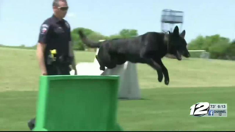The Sherman Police Department is hosting the U-S Police Canine Association certification in...