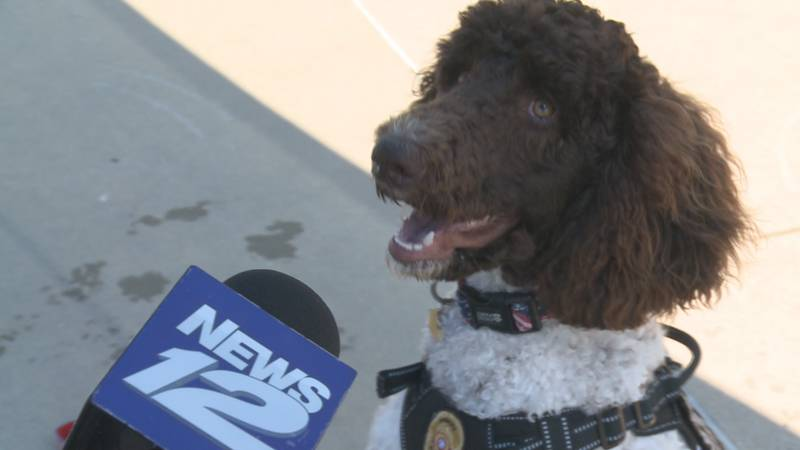 The Ardmore Police Department's therapy K-9, Rip, plans to attend the party to meet new friends...