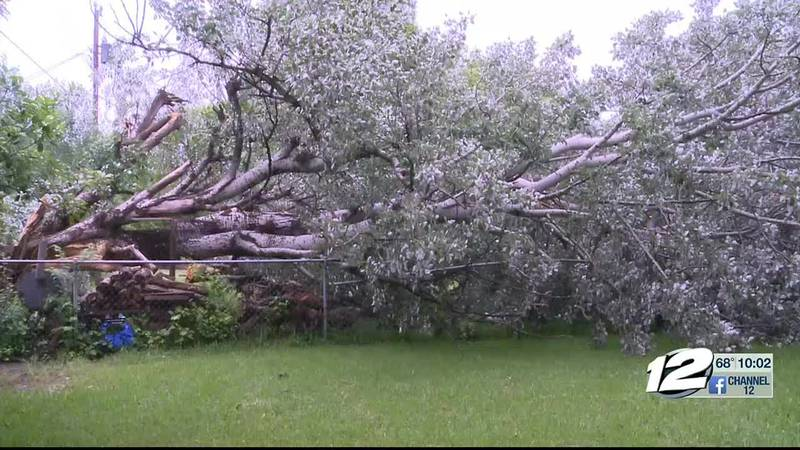 Downed powerlines, fallen trees and more accounted for damage across Texoma as gusty winds of...