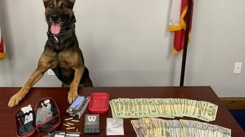 A man is behind bars after a K9 from the Sherman Police Department made a drug bust Monday...
