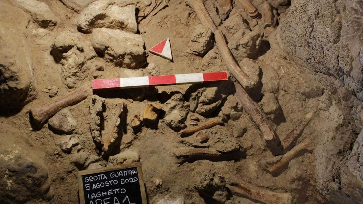 This image released by the Italian Culture Ministry shows a cave near Rome where fossil...