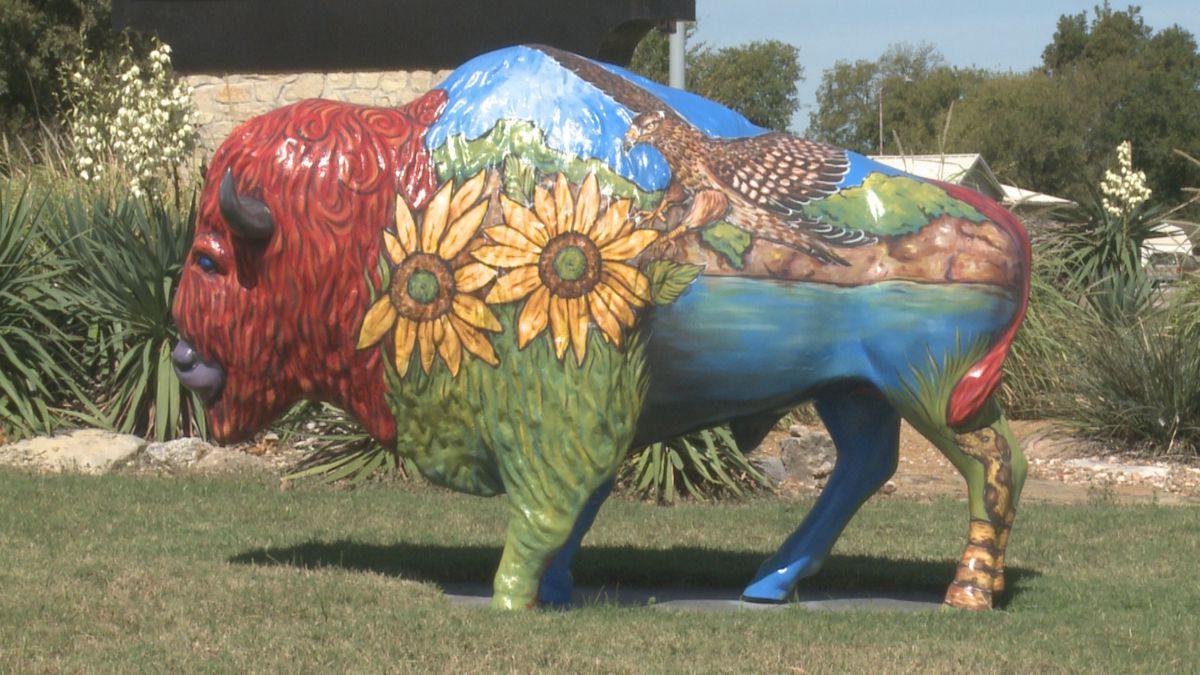 An Ardmore buffalo statue was brought back to its home in front of the Hardy Murphy Coliseum on Monday with a fresh new look.