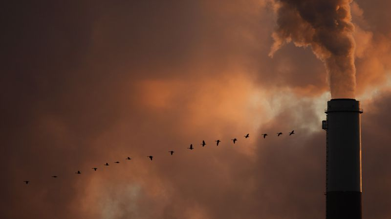 FILE - In this Jan. 10, 2009 file photo, a flock of geese fly past a smokestack at a coal power...